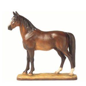 ANRI - Hannoverian stallion - Helmut Diller