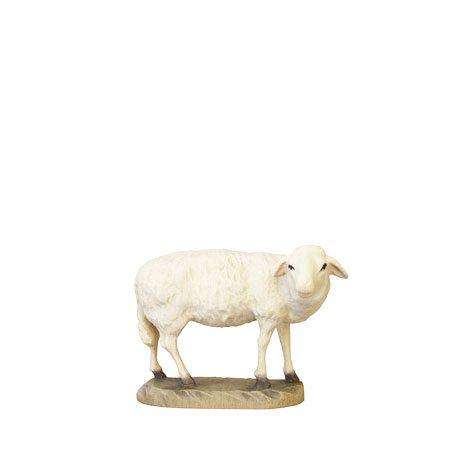 ANRI - Sheep looking - Karl Kuolt nativity