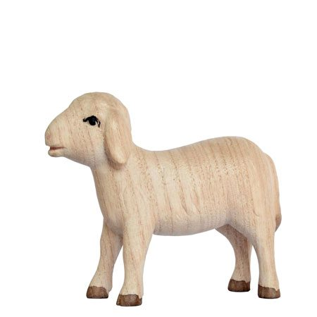 Playful nativity - Sheep standing